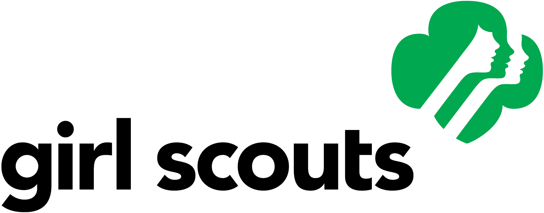 Local Girl Scout Troop Raises Funds for Giant Steps